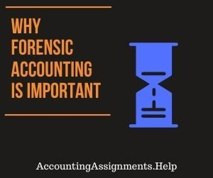 Why Forensic Accounting is Important